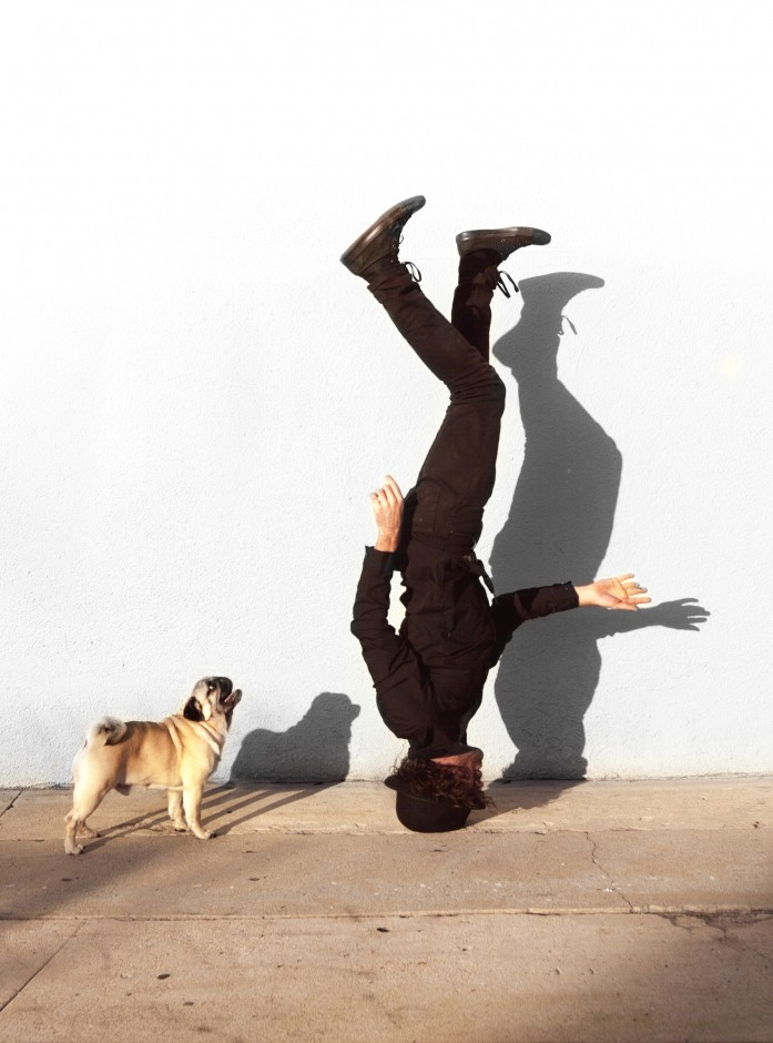 MIKESBUTT_pug head stand